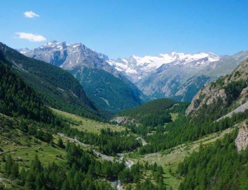 Reisebrev fra Grand Paradiso: 10 høydepunkt med 10 ville Jomfruer i Alpene